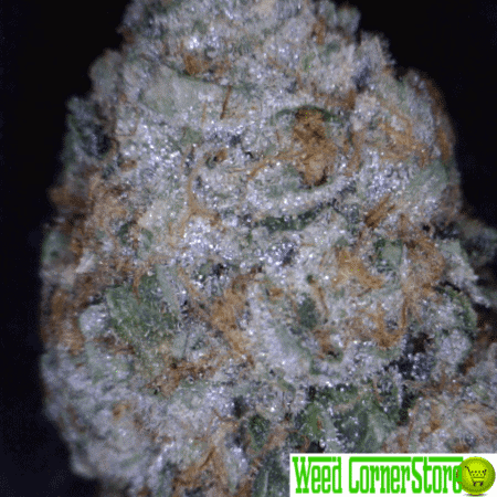 skywalker og, buy skywalker og, buy weed online, buy marijuana online, skywalker og for sale