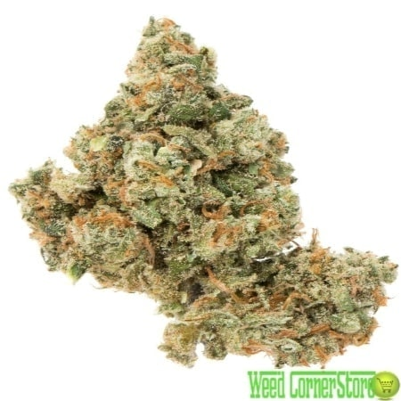 buy jack herer online | jack herer weed | jack herer for sale |