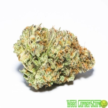 cannabis northern lights for sale online | buy norther lights