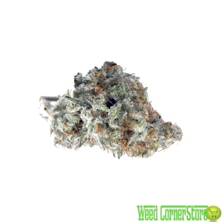 marijuana white widow strain | buy white widow online