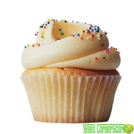 cannabutter cupcakes | buy cannabutter cupcake | marijuana cupcakes for sale