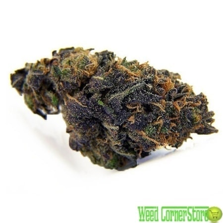 blackberry kush strain | buy blackberry kush | Weed for sale |